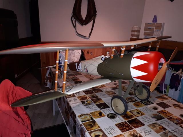 Le Nieuport 28 est reçu ! 20190113