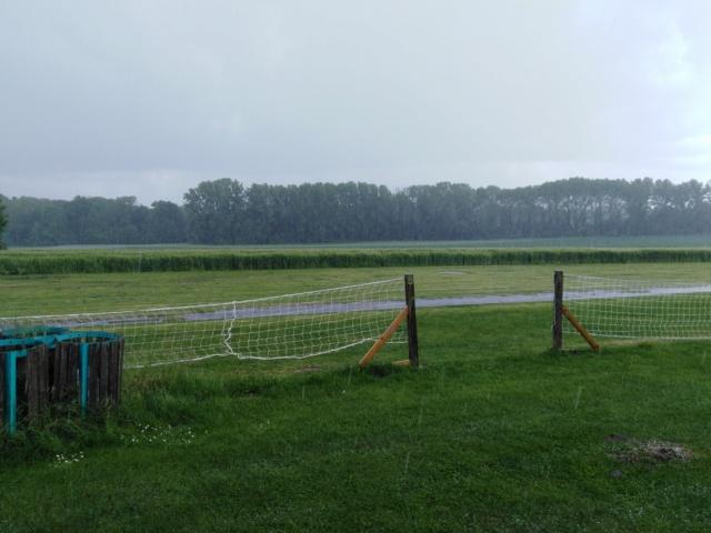 Samedi tranquille entre averses orageuses ! Img_2383