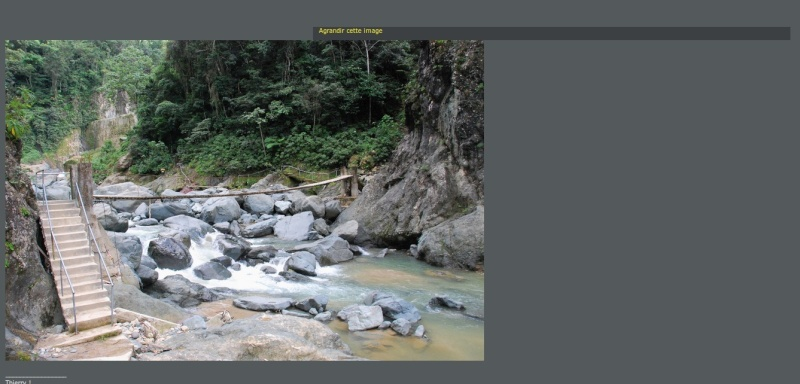 Postage et affichage des images. Sylect21