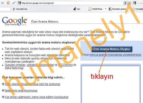 Sitenize Özel Google Arama motoru 113