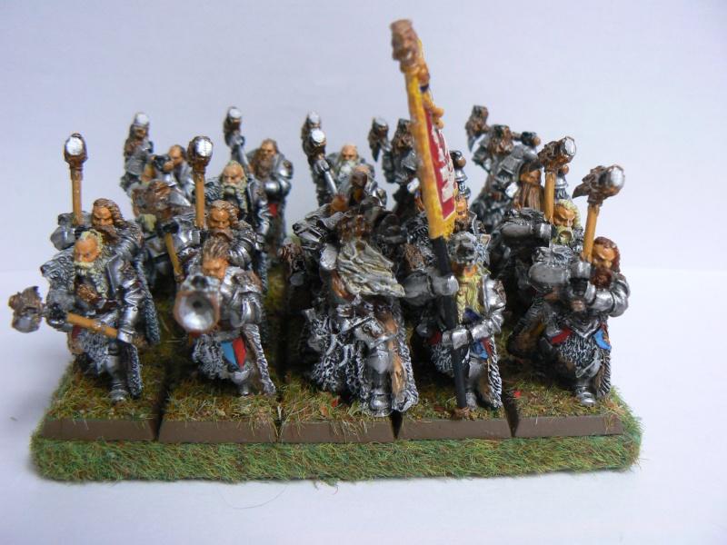 Mon Armée du Culte d'Ulric et du Middeinhem. - Page 2 P1140014