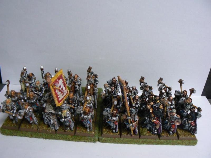 Mon Armée du Culte d'Ulric et du Middeinhem. - Page 2 P1140017