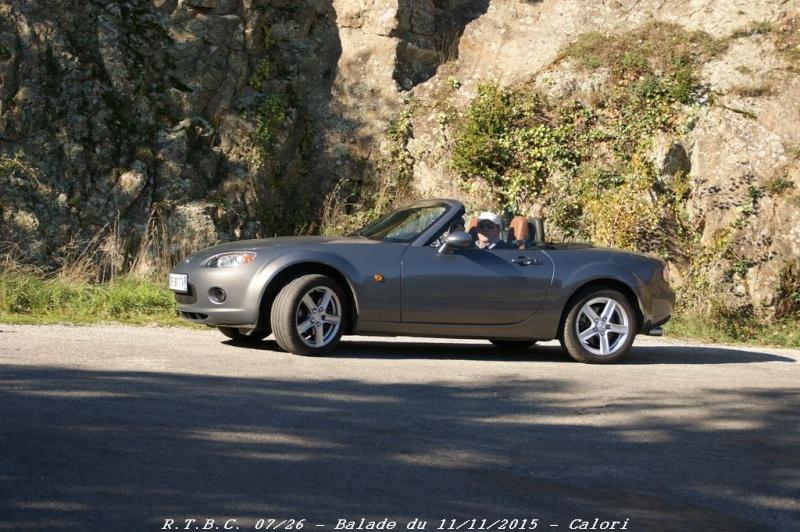 [26] 11/11/2015 - Sortie Hivernale à Saulce sur Rhône - Page 6 Dsc09711