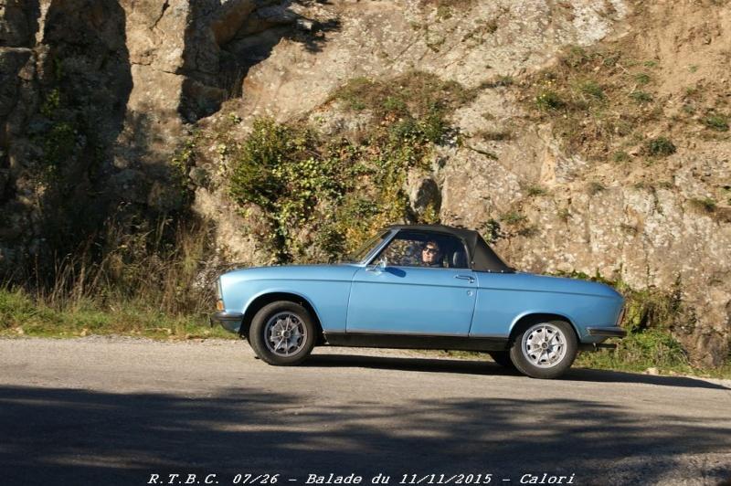 [26] 11/11/2015 - Sortie Hivernale à Saulce sur Rhône - Page 6 Dsc09727