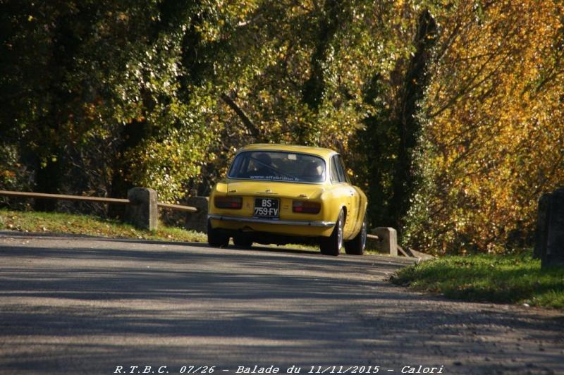 [26] 11/11/2015 - Sortie Hivernale à Saulce sur Rhône - Page 6 Dsc09822