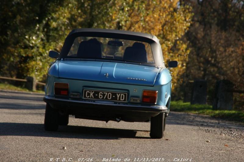 [26] 11/11/2015 - Sortie Hivernale à Saulce sur Rhône - Page 6 Dsc09823