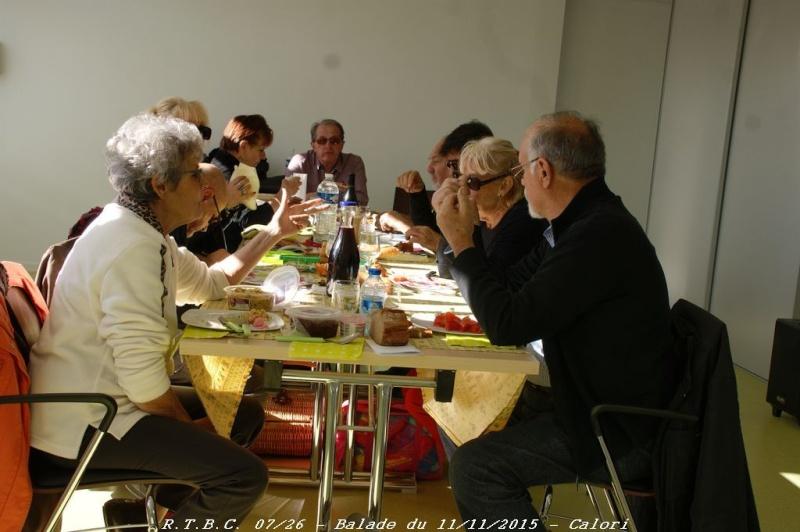 [26] 11/11/2015 - Sortie Hivernale à Saulce sur Rhône - Page 6 Dsc09918