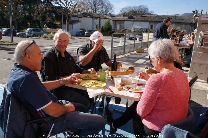 [26] 11/11/2015 - Sortie Hivernale à Saulce sur Rhône - Page 6 Dsc09920