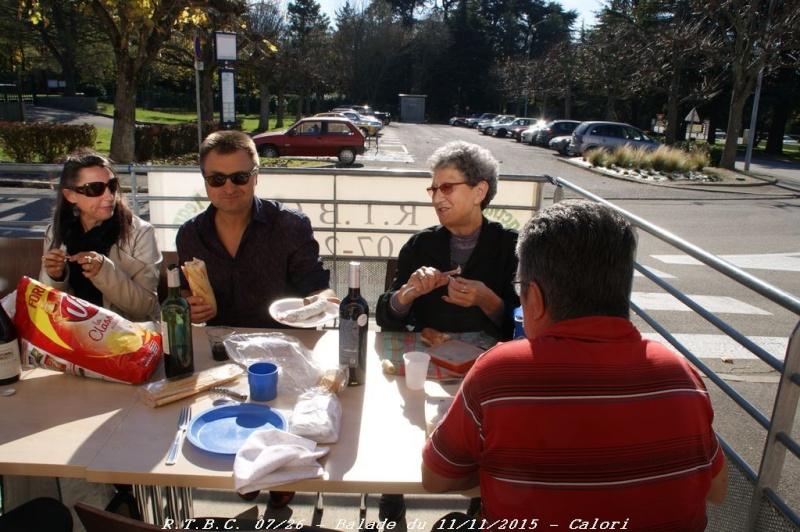 [26] 11/11/2015 - Sortie Hivernale à Saulce sur Rhône - Page 6 Dsc09928