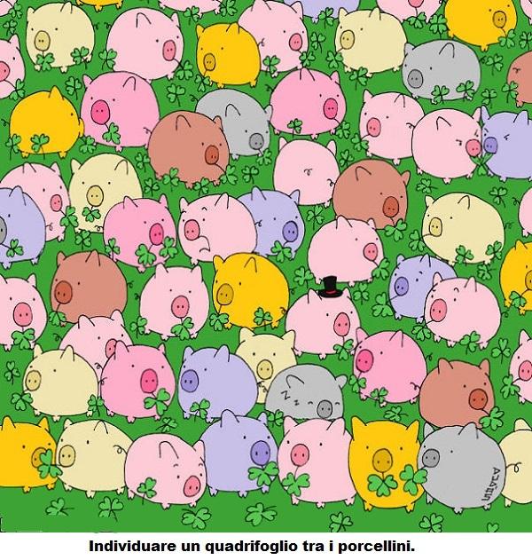 A proposito di maiali - Pagina 22 Maiali11