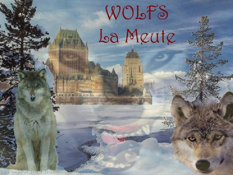 Les Wolfs