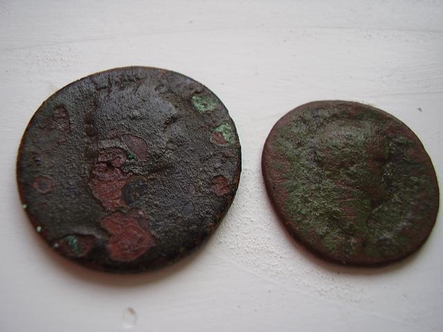 romaine a id P2180210