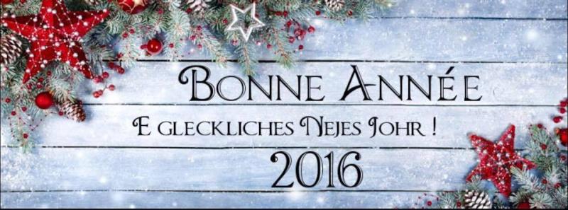 Bonne année 2016 ! 19103710