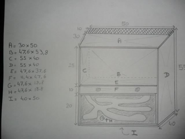 Terrarium pour Eublepharis. Sam_4614