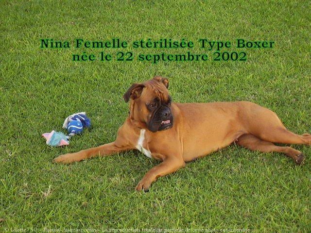 Apache, Nina, D'coco chanel 45979910