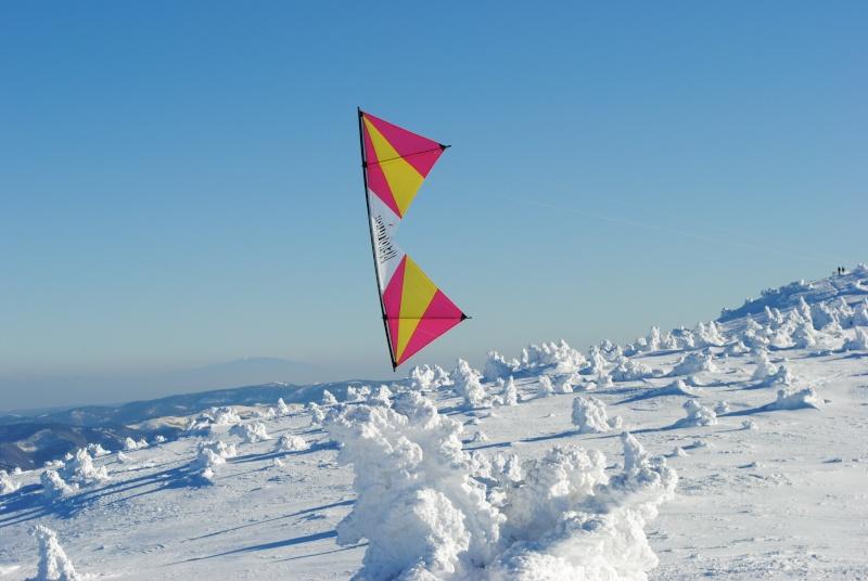 Les cervolistes vont aussi à la neige. Dsc_0313