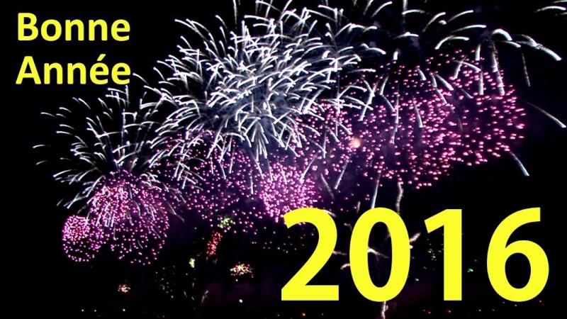 Bonne année touts mes vœux pour 2016  Maxres11