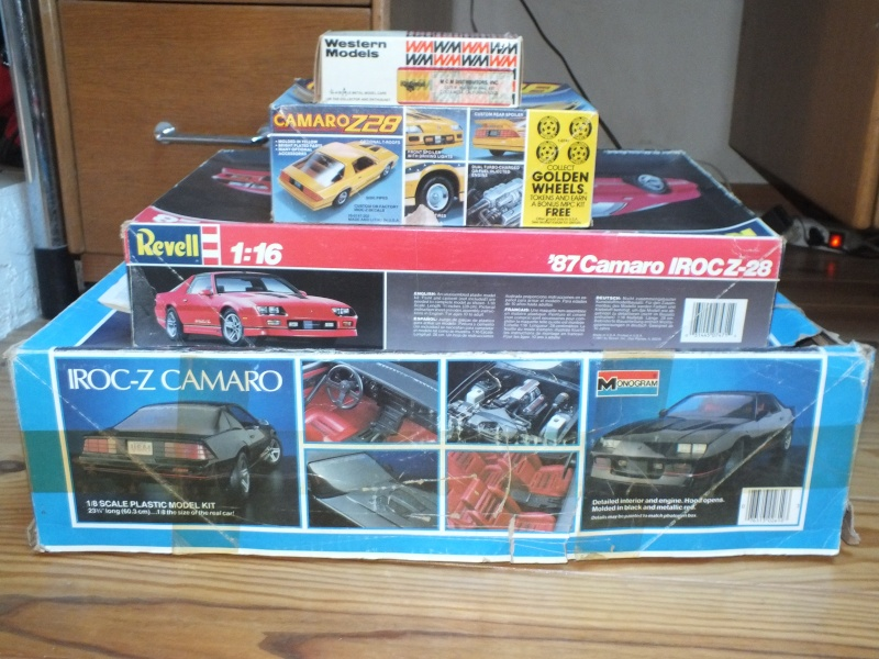 #17 : Chevrolet Camaro IROC Z28 5.7 TPI 1987 [3 terrminées] - Page 2 Dscf0036
