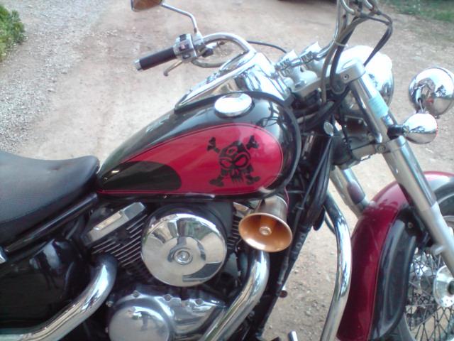 800 VN - la moto de notre ami Poulpe ! Vn800_11