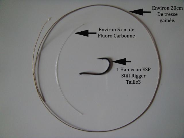 Technique montage évolution d'un D-rig Dsc01229