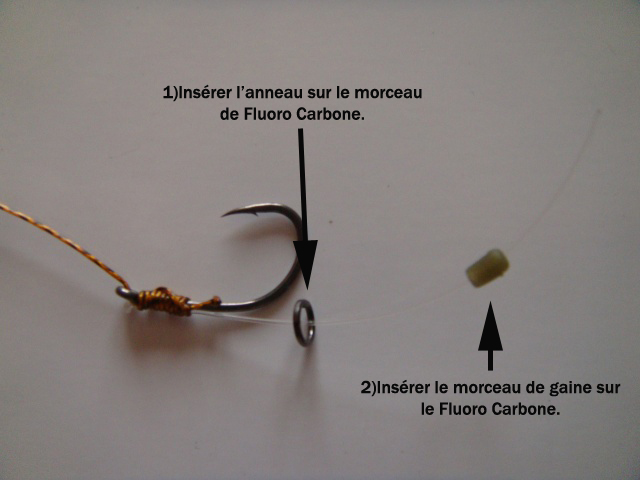 Technique montage évolution d'un D-rig 2 Dsc01332