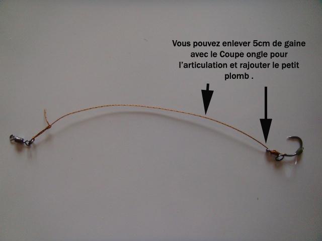 Technique montage évolution d'un D-rig 2 Dsc01334