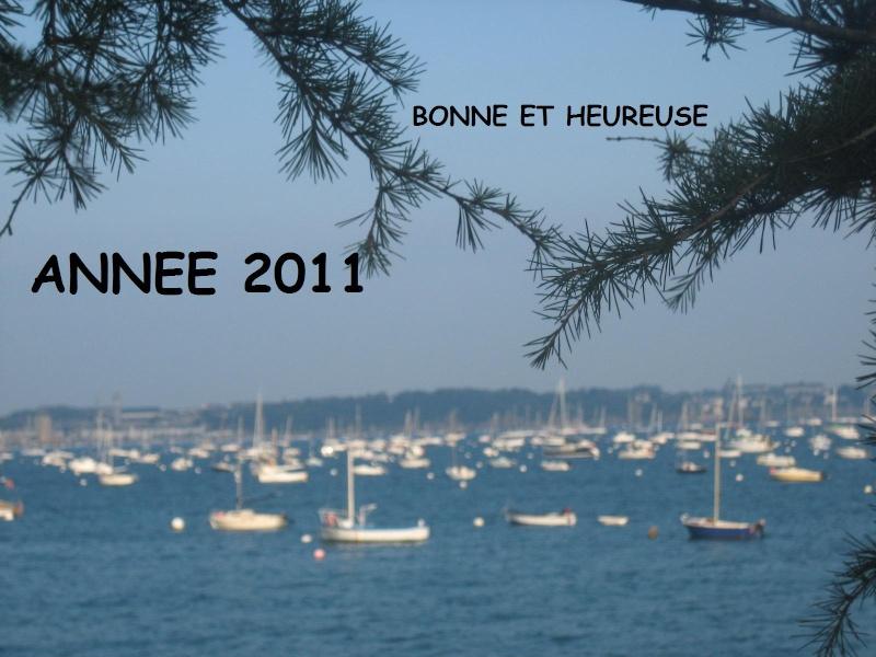 Nouvelle année 201110