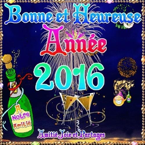 Bonne année 2016! 39265412