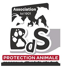 L'Association Bêtes de Scène - Page 5 Bds-lo12