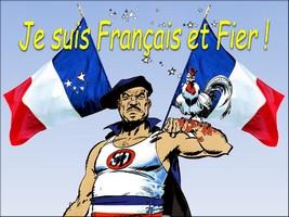 LA FRANCE EST EN GUERRE - Page 3 Sd_110