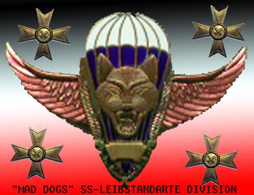 Перекличка участников игры Company of heroes:Commanders Ddn_nn10