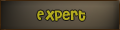 Expert