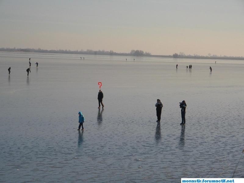 L'hiver en Holland Img_0218