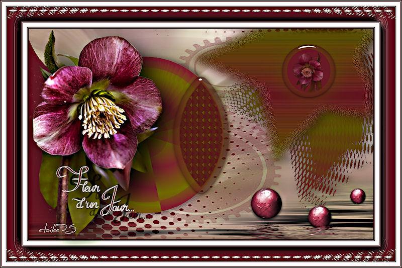 Fleur d'un jour(Psp) Image410