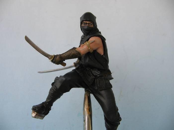 Ninja pegaso 75 mm Img_0107