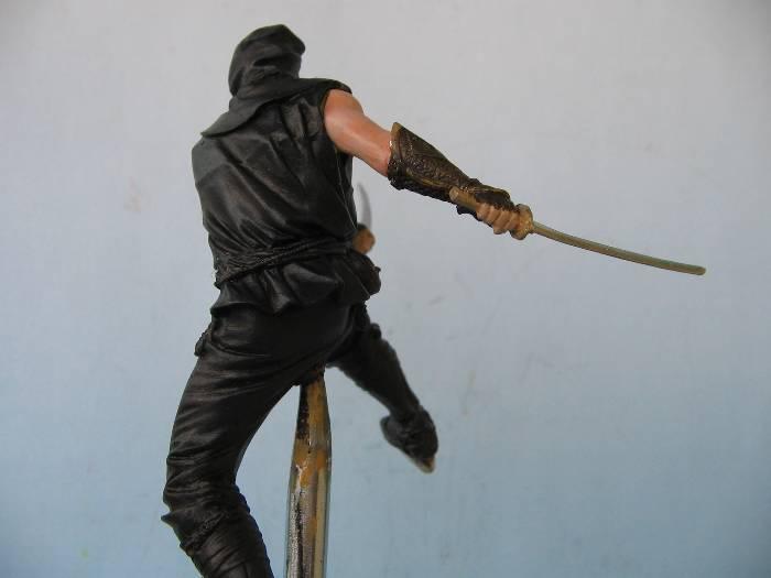 Ninja pegaso 75 mm Img_0108
