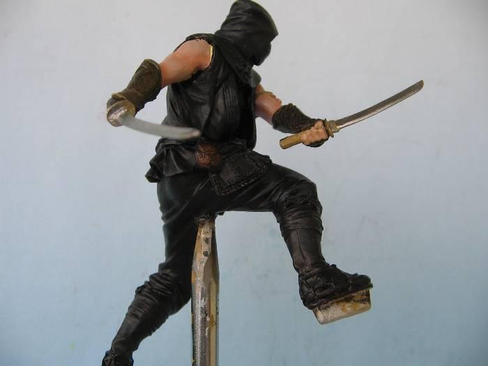 Ninja pegaso 75 mm Img_0109