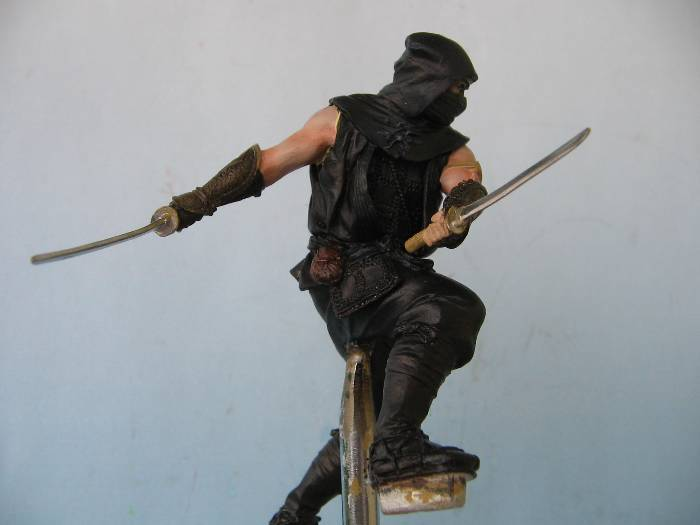 Ninja pegaso 75 mm Img_0157