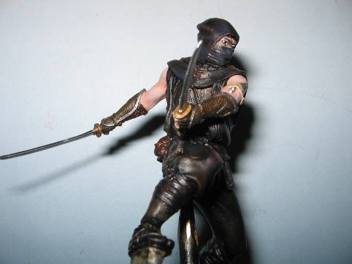 Ninja pegaso 75 mm Img_0163