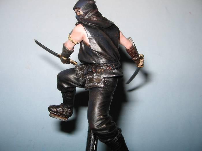 Ninja pegaso 75 mm Img_0165