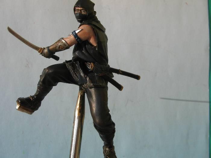 Ninja pegaso 75 mm Img_0175