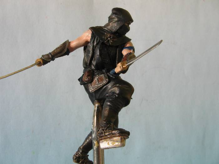Ninja pegaso 75 mm Img_0176