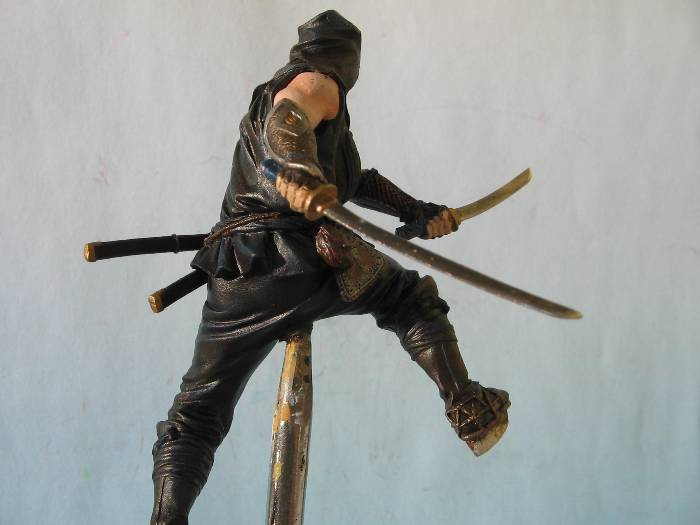 Ninja pegaso 75 mm Img_0177