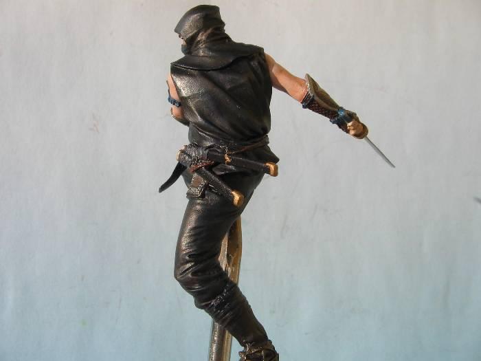 Ninja pegaso 75 mm Img_0178