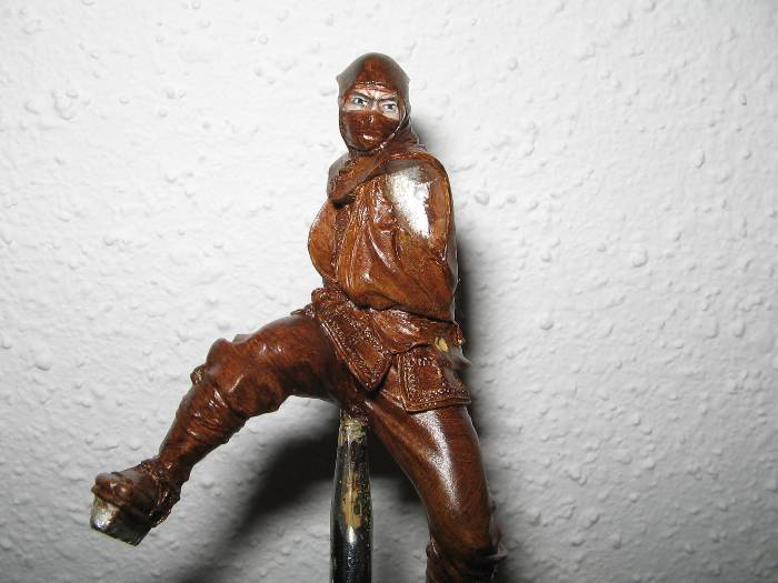 Ninja pegaso 75 mm Img_0781