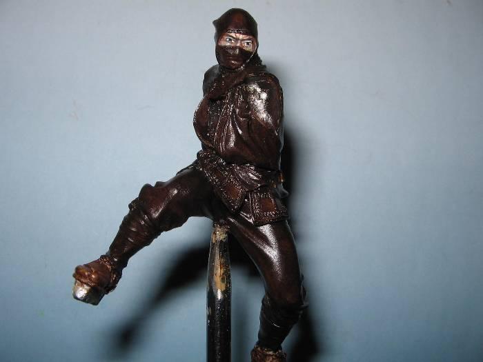 Ninja pegaso 75 mm Img_0785