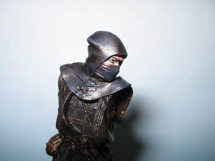 Ninja pegaso 75 mm Img_0794