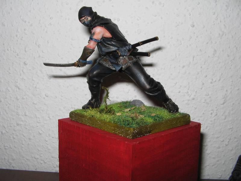 Ninja pegaso 75 mm Img_0863