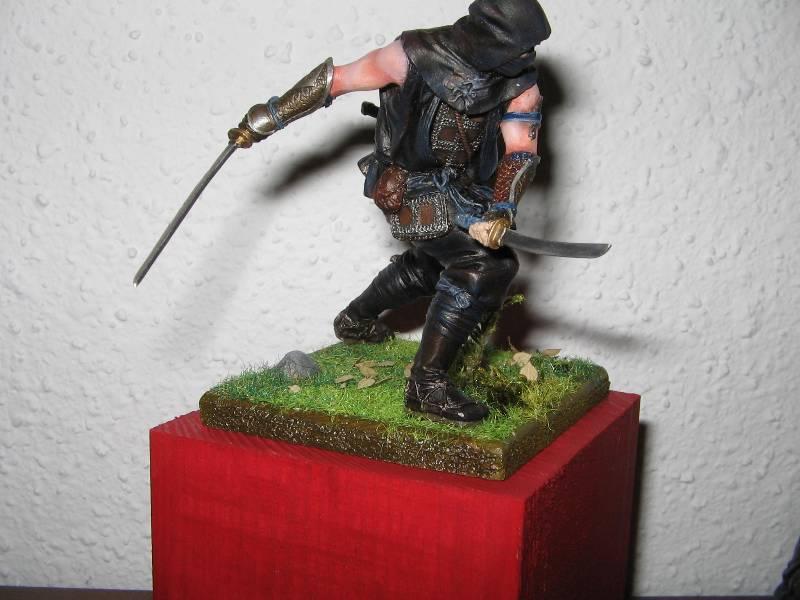 Ninja pegaso 75 mm Img_0864