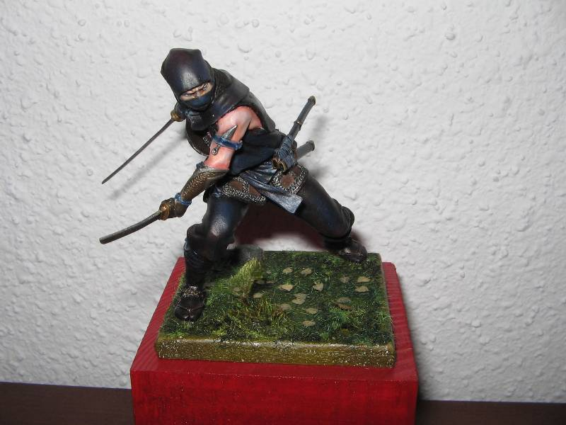 Ninja pegaso 75 mm - Page 2 Img_0876